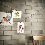 Eden: Ceramic tiles - Ragno_7902