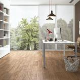 Woodpassion: Ceramic tiles - Ragno_5363