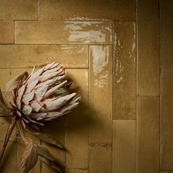 Look : the imperfect details of ceramic tiles